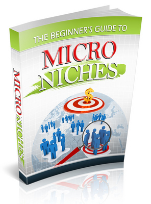 Product picture The Beginners Guide to Micro Niches + Gift